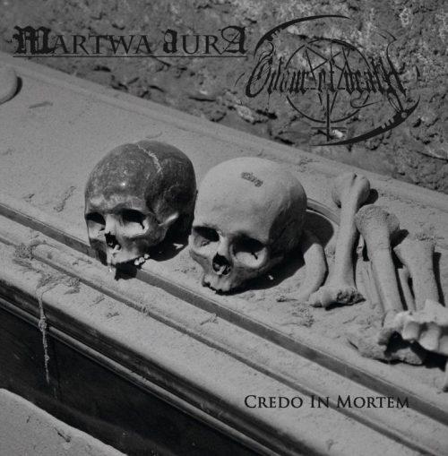 martwa-aura-odour-770x785